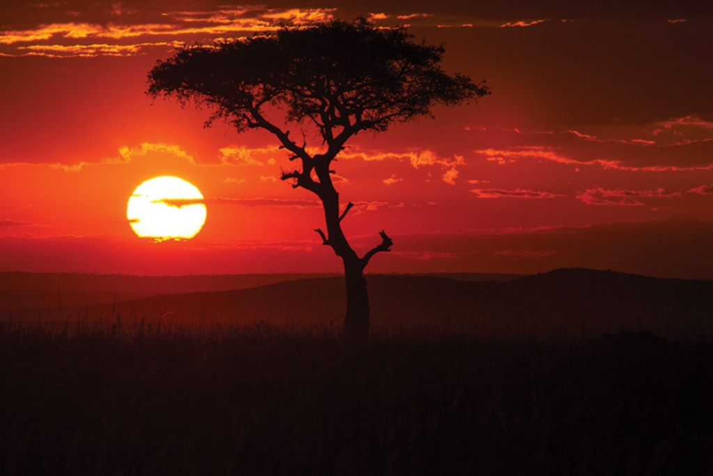 Golden Sunsets, Maasai Mara